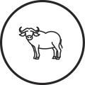 Material - Buffel